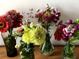 Four small vases of small arrangements of red, yellow, purple, and green flowers grown by Rebecca Maurer.